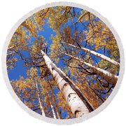 Round Beach Towel featuring the pyrography Aspen Trees Against The Sky In Crested Butte, Colorado.   by OLena Art Brand