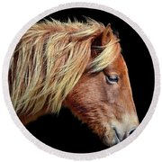Assateague Pony Sarah's Sweet Tea Portrait On Black Round Beach Towel