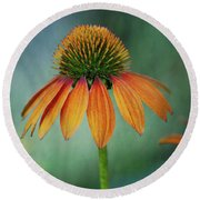 Round Beach Towel featuring the photograph Attracting Attention by Dale Kincaid