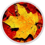Autumn Beige Yellow Leaf On Red Leaves Round Beach Towel