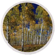 Round Beach Towel featuring the photograph Autumn Blue Skies by James BO Insogna