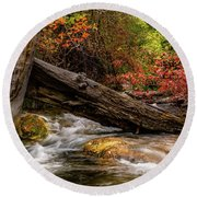 Round Beach Towel featuring the photograph Autumn Dogwoods by TL Mair