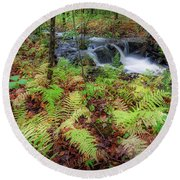 Round Beach Towel featuring the photograph Autumn Fern by Bill Wakeley