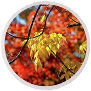 Round Beach Towel featuring the photograph Autumn Foliage In Bar Harbor, Maine by Bill Swartwout Fine Art Photography