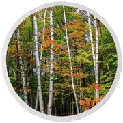 Autumn Grove, Vertical Round Beach Towel