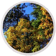 Autumn In Apache Sitgreaves National Forest, Arizona Round Beach Towel