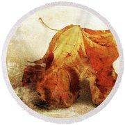 Round Beach Towel featuring the photograph Autumn Texture by Randi Grace Nilsberg