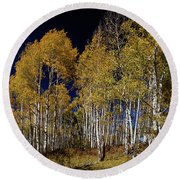 Round Beach Towel featuring the photograph Autumn Walk In The Woods by James BO Insogna