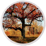 Autumns Paint Brush Round Beach Towel