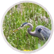 Round Beach Towel featuring the photograph B40 by Joshua Able's Wildlife