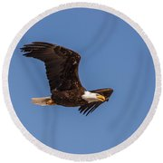 Round Beach Towel featuring the photograph B8 by Joshua Able's Wildlife