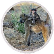 Baboon And Baby Round Beach Towel