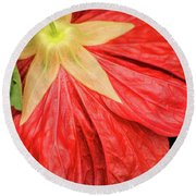 Back Of Red Flower Round Beach Towel