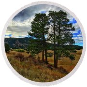 Round Beach Towel featuring the photograph Backlit Pine by Dan Miller