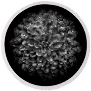 Backyard Flowers In Black And White 46 Round Beach Towel