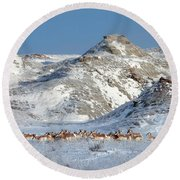 Badlands Antelope Round Beach Towel