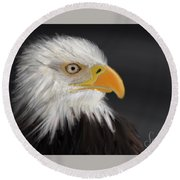 Round Beach Towel featuring the pastel Bald Eagle by Fe Jones