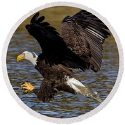 Round Beach Towel featuring the photograph Bald Eagle Fishing On The James River by Lori Coleman