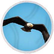 Bald Eagle In Flight  Round Beach Towel