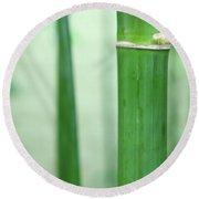 Bamboo 0312 Round Beach Towel