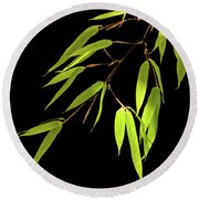 Bamboo Leaves 0580a Round Beach Towel
