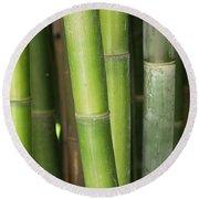 Bamboo Stalk 4057 Round Beach Towel