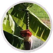 Round Beach Towel featuring the photograph Banana Beauty by Marian Palucci-Lonzetta