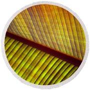 Banana Leaf 8602 Round Beach Towel