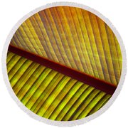 Banana Leaf 8603 Round Beach Towel