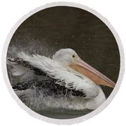 Bathing Pelican Round Beach Towel