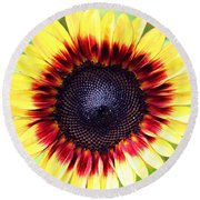 Round Beach Towel featuring the photograph Be Bold by Candice Trimble
