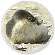 Beach Seal Round Beach Towel