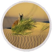Beachgrass And Ripples Round Beach Towel