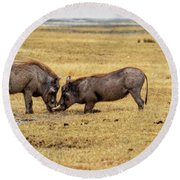 Round Beach Towel featuring the photograph Beauty On The Hoof, The Warthog by Kay Brewer