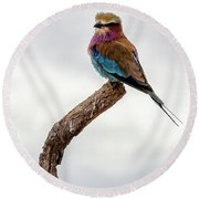 Round Beach Towel featuring the photograph Beauty With Wings, The Lilac Breasted Roller by Kay Brewer