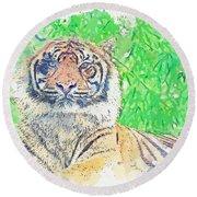 Bengal Tiger -  Watercolor By Ahmet Asar Round Beach Towel