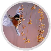 Bird Eating On The Fly Round Beach Towel