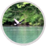 Bird In Flight Round Beach Towel
