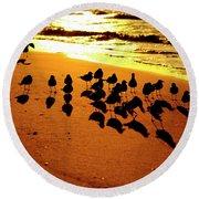 Bird Shadows Round Beach Towel