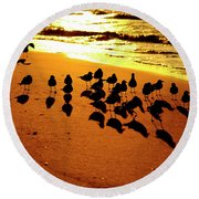 Bird Shadows Round Beach Towel