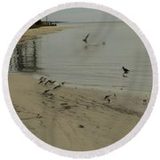 Birds On Beach Round Beach Towel