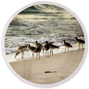 Birds On The Beach Round Beach Towel