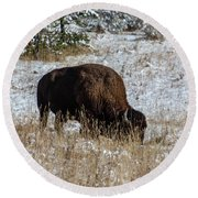 Round Beach Towel featuring the photograph Bison In The Snow by Pete Federico