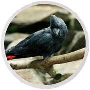 Black And Red Cockatoo. Round Beach Towel