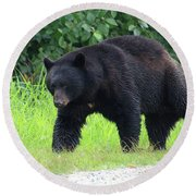 Black Bear Crossing Round Beach Towel