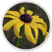 Round Beach Towel featuring the photograph Black Eyed Susan by Dale Kincaid