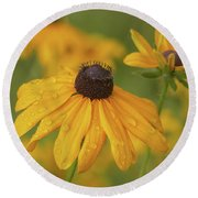 Round Beach Towel featuring the photograph Black-eyed Susans by Dale Kincaid