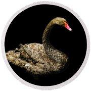 Black Swan On Black  Round Beach Towel