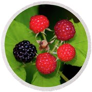 Blackberries Round Beach Towel