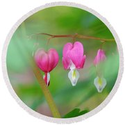 Bleeding Heart Flowers  Round Beach Towel